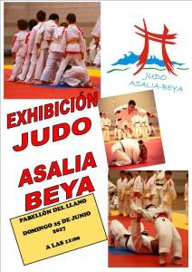 Publicación1CARTEL EXHIBICION